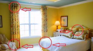 What to do when you discover bed bugs in your hotel
